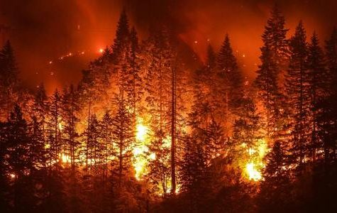 Wildfires Spreading Rapidly Across the West Coast